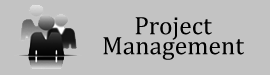 Project Management Tag - Consulting Firm